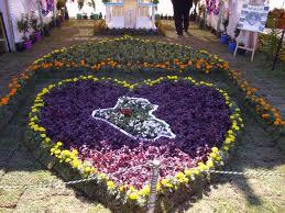مهرجان بغداد الدولي الخامس للزهور