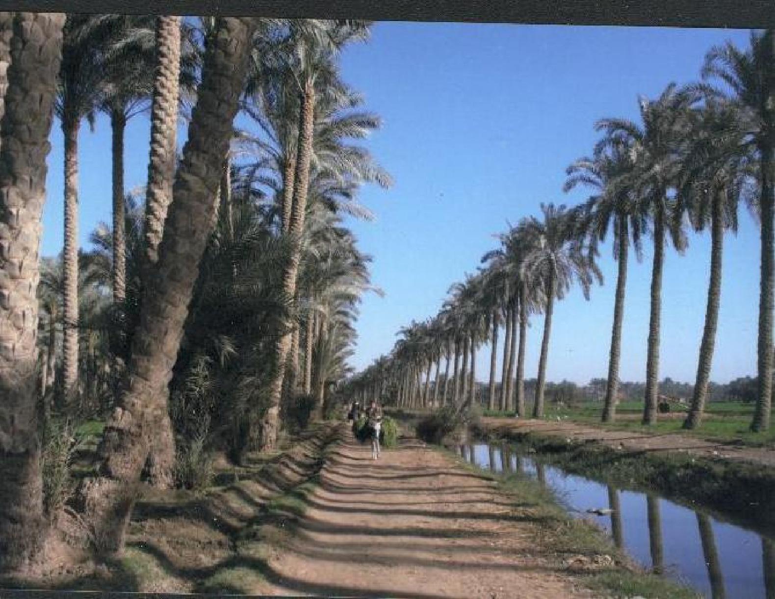 انشاء محطة تحلية عملاقة على الخليج لتوفير الماء الصالح للشرب لاهالي البصرة