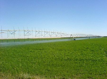 للمحافظة على حصة العراق المائية .. تشديد على اهمية تشريع قانون المجلس الوطني للمياه