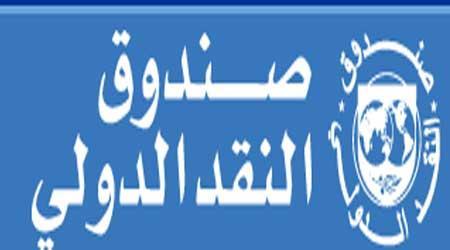 خبير اقتصادي: العراق بحاجة الى قروض صندوق النقد الدولي لتنفيذ مشاريعه التنموية المختلفة