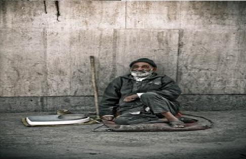 دعوة حمّال … بقلم بشرى الهلالي