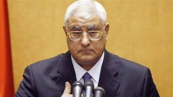 اعلان دستوري بمصر يحدد 6 أشهر لإجراء انتخابات تشريعية