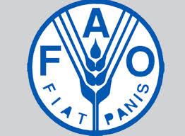 فاو :نصف البشرية تعاني من مشكلات تغذوية