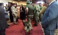 برلمان الكلاب البوليسية . . . !