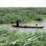 الاهوار العراقية وانضمامها الى لائحة التراث العالمي..ايران وتركيا تعترض..من المسؤول؟