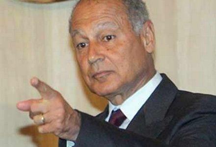 أبو الغيط يطالب تركيا بسحب قواتها من العراق
