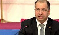 الجبوري يدعو الى عقد مؤتمر لدول الجوار العراقي