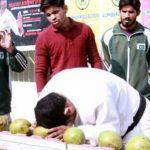 باكستاني يكسر برأسه 43 حبة من جوز الهند