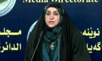 شناشيل : اختبار برسم النُخَب العراقية الوطنية