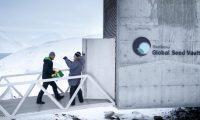 النرويج:تحسينات فنية  لقبو سفالبارد العالمي للبذور