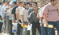 البطالة ، بوابة إرهاب الدولة الواسع !
