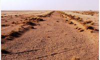 ترميم أقدم طريق في مكة