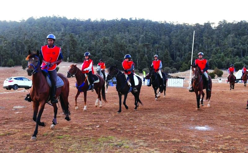 في المغرب سباق القدرة والتحمل