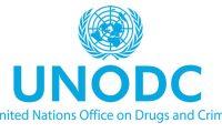 الأمم المتحدة:المخدرات ستقضي على شباب العراق