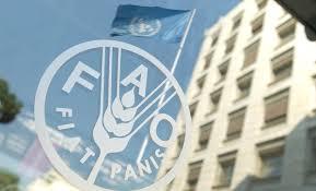الأمم المتحدة:العراق خسر 40% من انتاجه الزراعي بعد 2014
