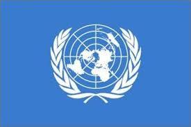 الأمم المتحدة تدعو لوقف فوري للأعمال القتالية في سوريا