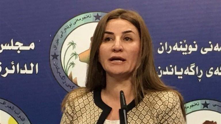 دخيل:موقف الحكومة خجول أمام التدخلات العسكرية التركية في العراق