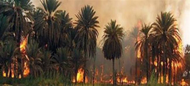 وزارة الداخلية السبب .. الحرائق دمار لاقتصاد البلاد وافلاس العباد؟