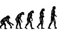 كتاب جديد يبحث في نظرية التطور لداروين