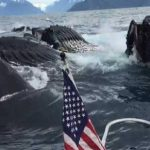 """كاميرا ترصد """"مشهدا مهيبا"""" بقلب المحيط"""