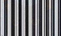هل يمكنك رؤية حيوان في هذه الصورة؟