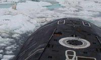 دب قطبي يروع غواصة نووية روسية