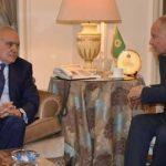 أبو الغيط وسلامة يبحثان الأزمة الليبية