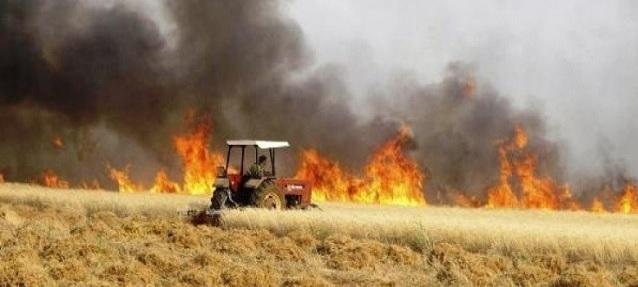 سائرون: الأذرع الإيرانية وراء حرق المزارع والبساتين العراقية