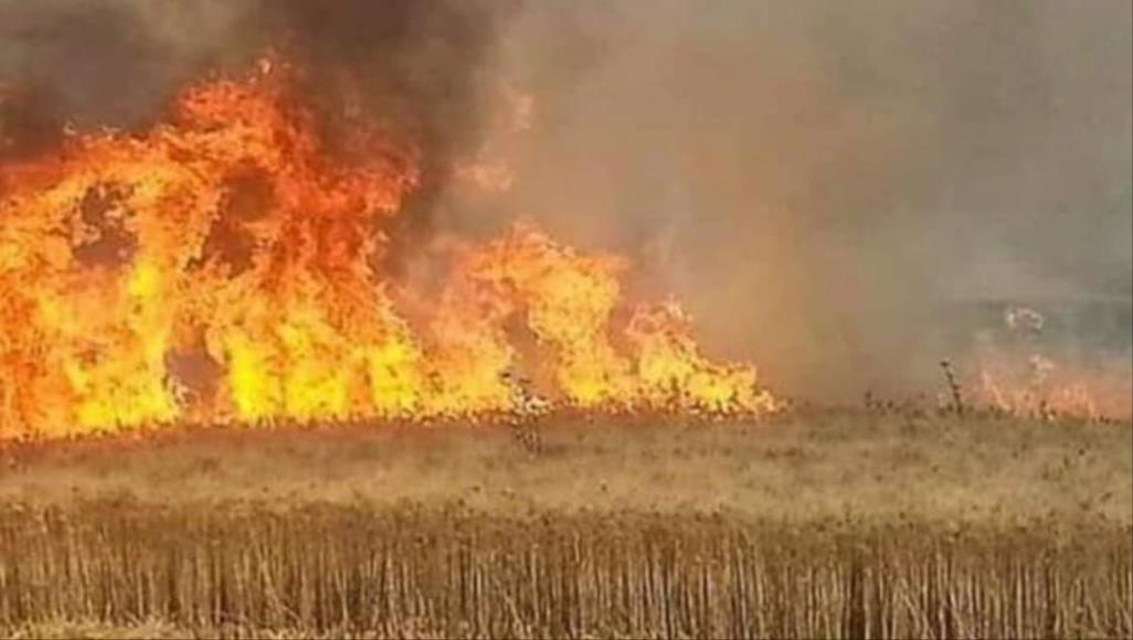 حرائق جديدة لمزارع العرب والتركمان في كركوك