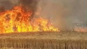 الشياطين تحرق مزارع العراق