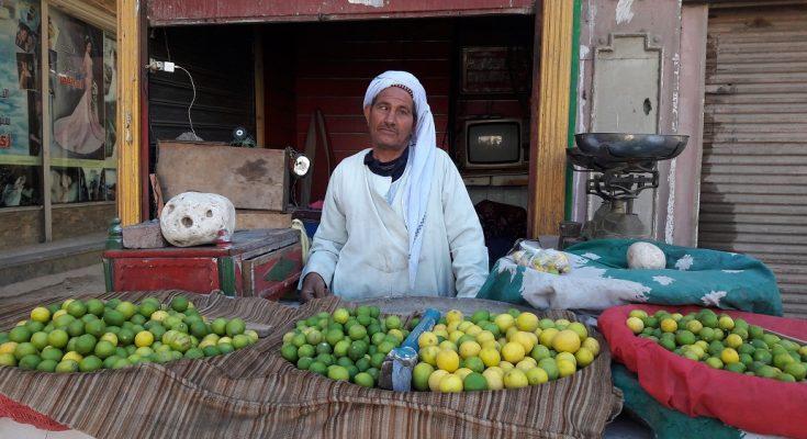 """""""جنون الليمون"""" في مصر"""