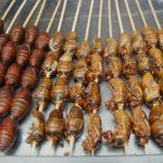 """أول مطعم في جنوب أفريقيا يقدم """"وجبات من الحشرات"""""""