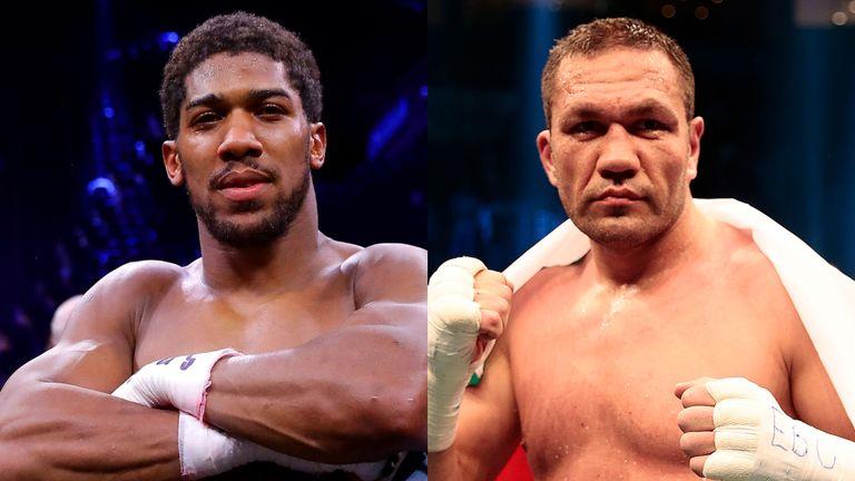 تأجيل النزال بين الملاكمين جوشوا وبوليف