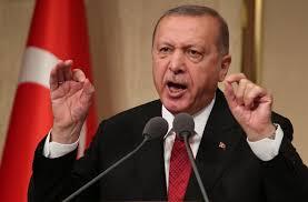 أردوعان:عزم أنقرة على حسم حملاتها العسكرية في سوريا والعراق وليبيا
