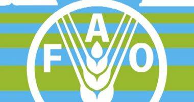 """منظمة """"الفاو""""تعلن عن حاجة العراق إلى مساعدات غذائية خارجية"""