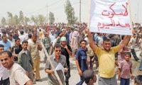 ذي قار .. يا صوت العراق المدّوي ويا ضميره المنتفض