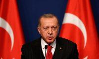 """أردوغان يعلن عن تأييده لـ""""منصة القرم الدولية"""""""