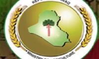 وزارة الزراعة:(5) دول لها الرغبة في الاستثمار الزراعي في العراق