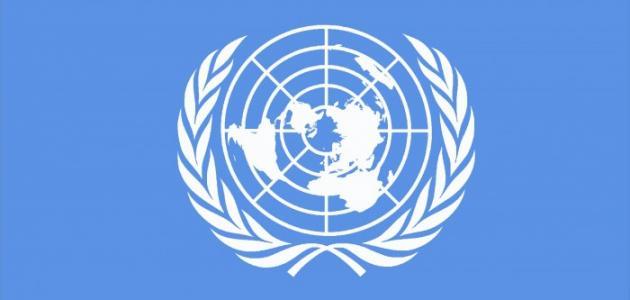 """الأمم المتحدة:حرية التعبير في الإقليم """" معدومة"""""""